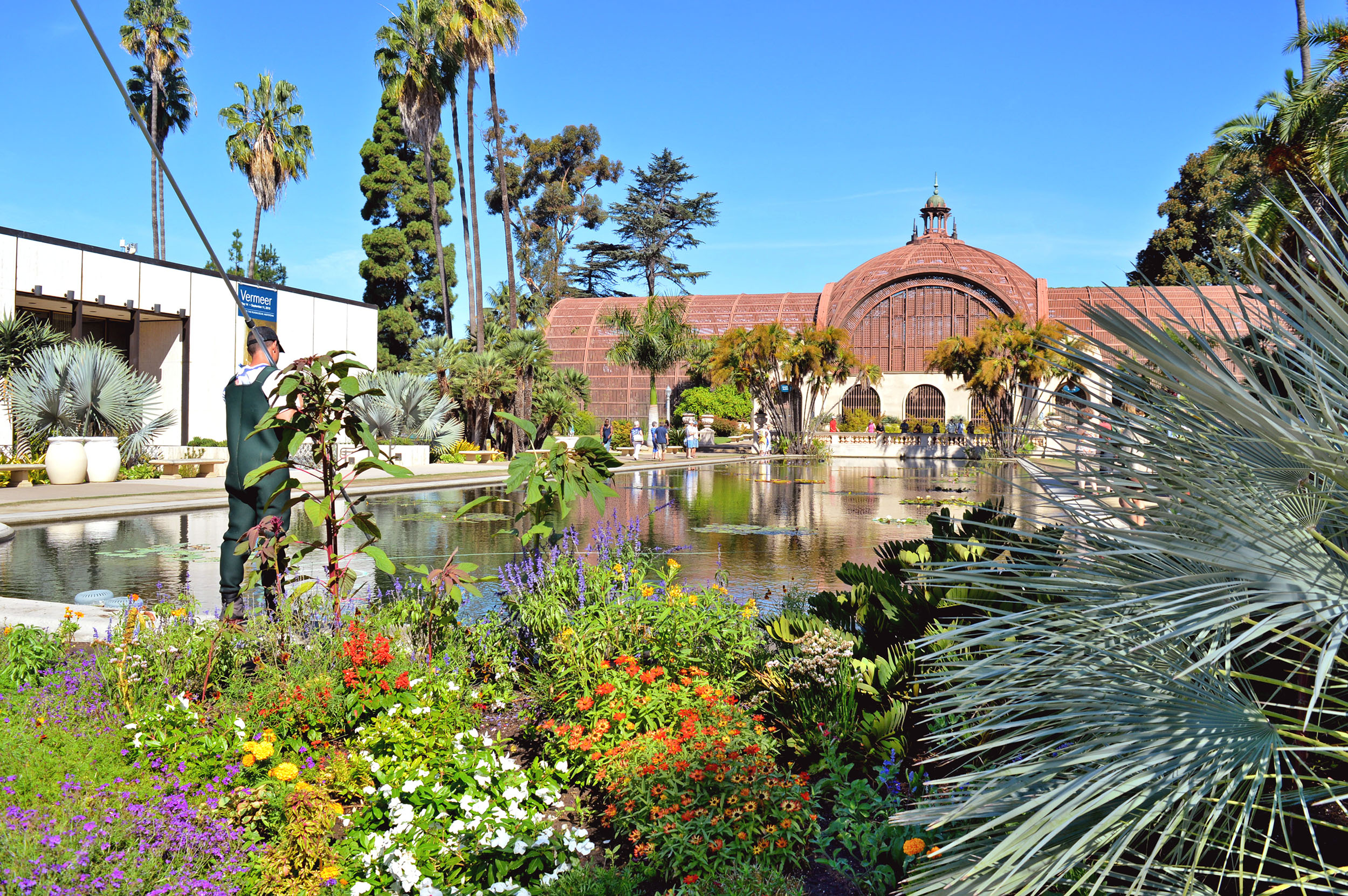 The botanical garden in Balboa Park, San Diego.