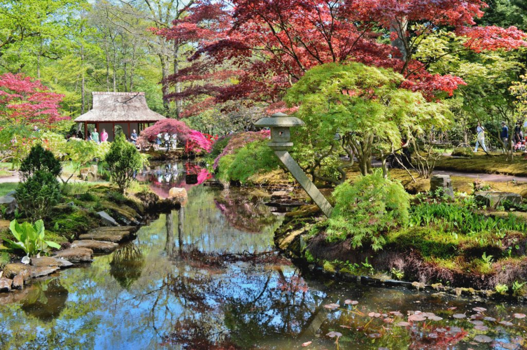 Japanese Garden in The Hague (Holland).