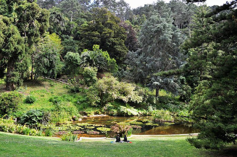 The Gardens of Monserrate