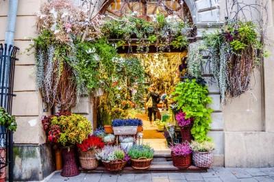 Flower shop in Krakow